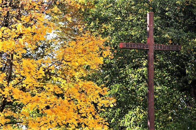 Krzyż to wieczne życie w szczęściu bez miary