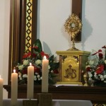 Jesteśmy powołani do ewangelizacji (133)